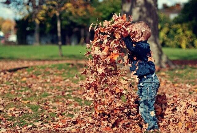 【最高気温10度の服装】子供のコーデを春・秋に分けて気象予報士が紹介